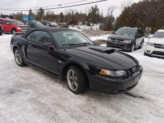 Used 2003 Ford Mustang GT Premium for sale in Madoc, ON