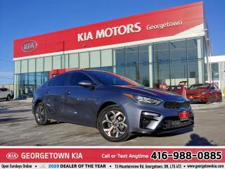 Used 2019 Kia Forte EX | 1 OWNER | CLEAN CARFAX | B/U CAM | 37,503 KM for sale in Georgetown, ON