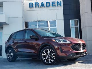 New 2021 Ford Escape SE Hybrid for sale in Kingston, ON