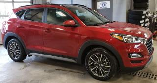 New 2021 Hyundai Tucson 2.4L AWD Luxury NO OPTIONS for sale in Port Hawkesbury, NS