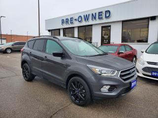 Used 2019 Ford Escape SE for sale in Brantford, ON