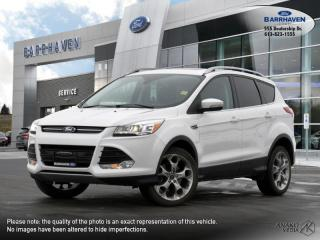 Used 2016 Ford Escape Titanium for sale in Ottawa, ON