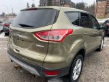 2013 Ford Escape SE/Clean Carfax /Safety Certification included Asking Price