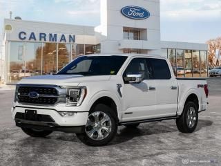 New 2021 Ford F-150 PLATINUM for sale in Carman, MB