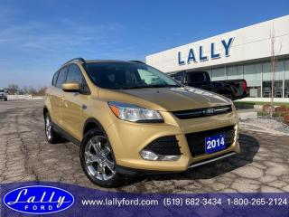 Used 2014 Ford Escape SE, Moonroof, Local Trade!! for sale in Tilbury, ON