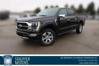 New 2021 Ford F-150 PLATINUM for sale in Tillsonburg, ON