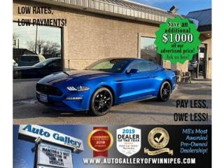 Used 2018 Ford Mustang EcoBoost Fastback* B.tooth/B.cam for sale in Winnipeg, MB