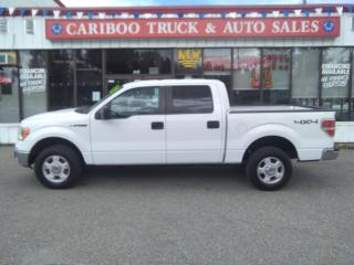 Used 2014 Ford F-150 for sale in Quesnal, BC