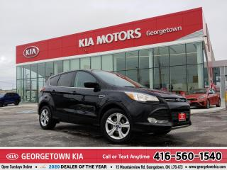 Used 2016 Ford Escape WHOLESALE TO THE PUBLIC | YOU CERTIFY YOU SAVE for sale in Georgetown, ON