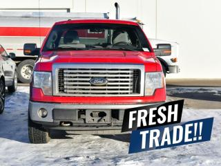 Used 2010 Ford F-150 XLT for sale in Red Deer, AB