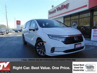 Used 2021 Honda Odyssey EX-L NAVI for sale in Peterborough, ON