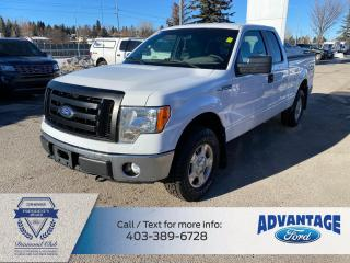 Used 2012 Ford F-150 XLT ONE PREVIOUS OWNER for sale in Calgary, AB