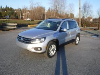 Used 2014 Volkswagen Tiguan S for sale in Burnaby, BC