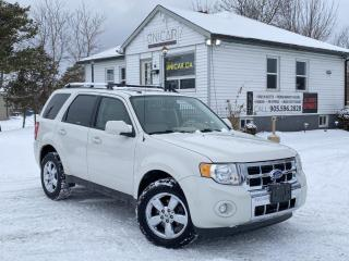 Used 2011 Ford Escape No-Accidents  4WD V6 Limited Leather Sunroof Bluetooth for sale in Sutton, ON