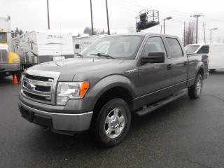 Used 2013 Ford F-150 XLT SuperCrew Short Box 4WD for sale in Burnaby, BC