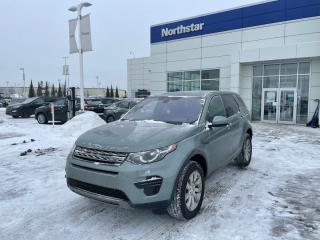 Used 2018 Land Rover Discovery Sport DISCOVERY/SE/LEATHER/SUNROOF/NAV/BACKUPCAM for sale in Edmonton, AB