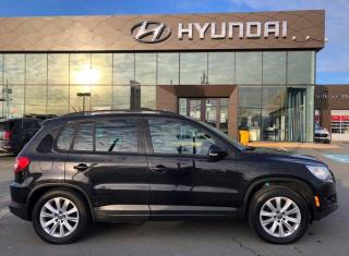 Used 2009 Volkswagen Tiguan SE for sale in Halifax, NS