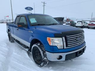Used 2010 Ford F-150 XLT for sale in Harriston, ON