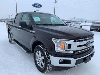 Used 2019 Ford F-150 XLT for sale in Harriston, ON