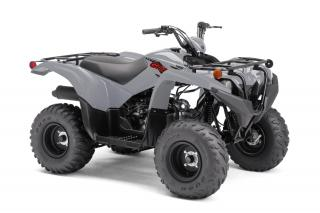 Used 2021 Yamaha Grizzly 90 for sale in Tilbury, ON