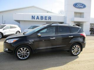Used 2016 Ford Escape SE for sale in Shellbrook, SK