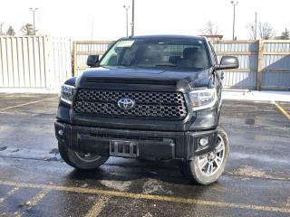 Used 2019 Toyota Tundra Platinum CREW 4WD for sale in Cayuga, ON