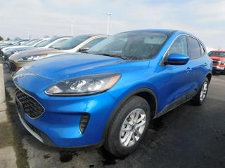 New 2021 Ford Escape SE for sale in Mount Brydges, ON