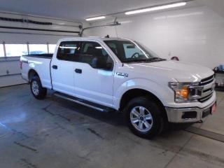 Used 2019 Ford F-150 XLT for sale in Owen Sound, ON