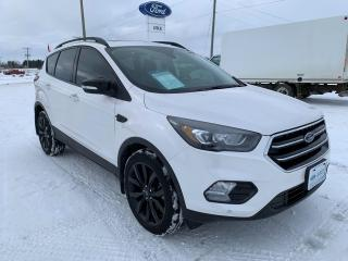 Used 2019 Ford Escape for sale in Harriston, ON