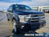 2020 Ford F-150 Platinum  - Premium Seats -  Navigation - $464 B/W