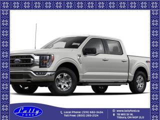 New 2021 Ford F-150 PLATINUM for sale in Tilbury, ON