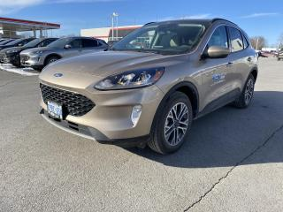 New 2020 Ford Escape SEL AWD for sale in Kingston, ON