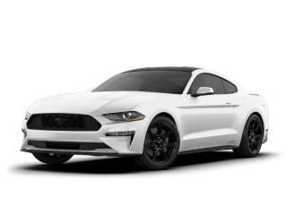 New 2021 Ford Mustang EcoBoost? Premium Fastback for sale in Thornhill, ON