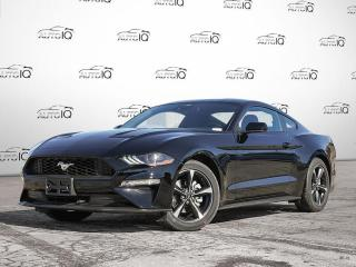 New 2021 Ford Mustang EcoBoost for sale in Kitchener, ON