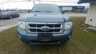 Used 2012 Ford Escape FWD 4dr XLT for sale in Windsor, ON
