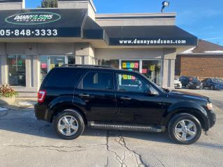Used 2009 Ford Escape XLT V6 4WD for sale in Mississauga, ON