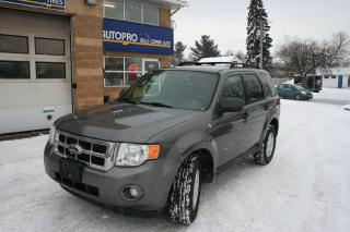 Used 2011 Ford Escape XLT for sale in Nepean, ON