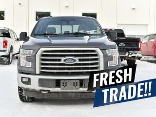 Used 2017 Ford F-150 XLT for sale in Red Deer, AB