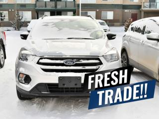 Used 2019 Ford Escape Titanium for sale in Red Deer, AB
