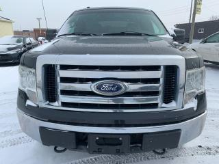 Used 2010 Ford F-150 for sale in North York, ON