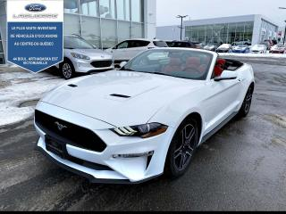 Used 2020 Ford Mustang EcoBoost haut niveau décapotable for sale in Victoriaville, QC