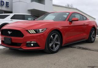 Used 2017 Ford Mustang V6 for sale in Brockville, ON