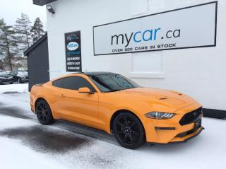 Used 2018 Ford Mustang EcoBoost RARE BEAUTY, NAV, 19