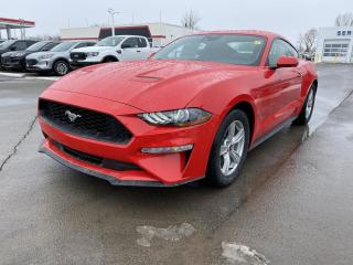 New 2021 Ford Mustang EcoBoost for sale in Kingston, ON