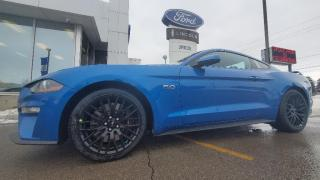 New 2021 Ford Mustang GT for sale in Niagara Falls, ON