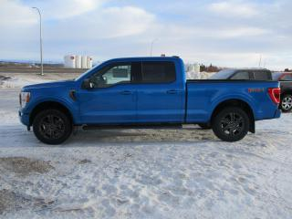 New 2021 Ford F-150 XLT SPORT for sale in Shellbrook, SK