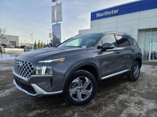 New 2021 Hyundai Santa Fe TREND: BLUELINK/LEATHER/SUNROOF/FULL SAFETY PKG for sale in Edmonton, AB