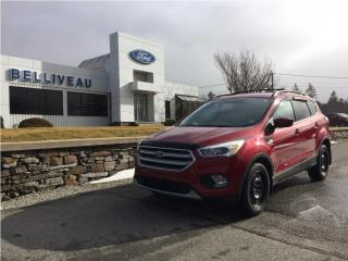 Used 2017 Ford Escape SE for sale in Church Point, NS