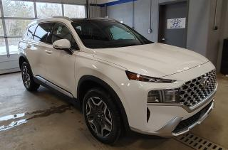 New 2021 Hyundai Santa Fe 1.6T PREFERRED TREND HYBRID AWD NO OPTIONS for sale in Port Hawkesbury, NS