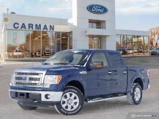 Used 2014 Ford F-150 XLT for sale in Carman, MB
